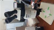 徕卡M80体视荧光显微镜