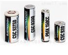 美國ELECTROCHEM高溫鋰電池全系列