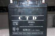 CTD西替帝蓄電池65-12/12v65AH廠家專賣