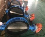 D971X潜水型电动对夹蝶阀