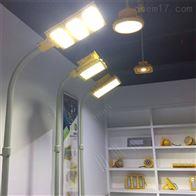 上海哪里有防爆灯具GLD660