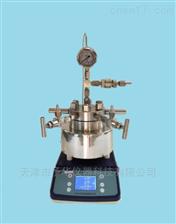 TGYF-B台式磁力搅拌高压反应釜