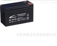 賽能蓄電池SN-12V250CH 12V250AH電子設備