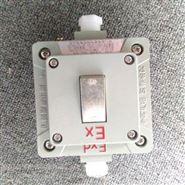 BQK10A250V配電房墻壁暗裝防爆開關盒