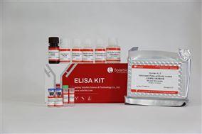 人白细胞介素2(IL-2)ELISA试剂盒