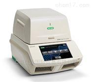 伯乐bio-rad CFX96Touch实时定量PCR仪现货