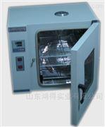 电热鼓风恒温干燥箱DHG101-6A