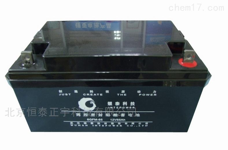 6GFM-38-银泰免维护铅酸蓄电池6GFM-38 12V38AH代理