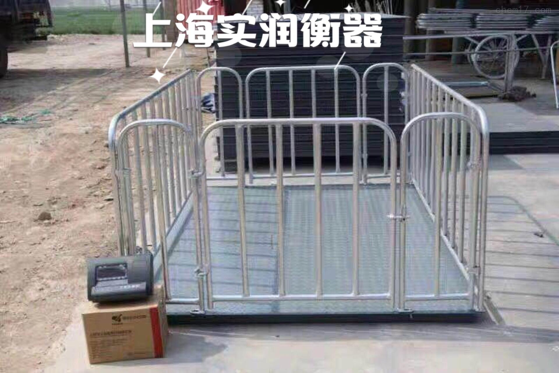 畜牧行业牲畜电子秤、电子围栏秤