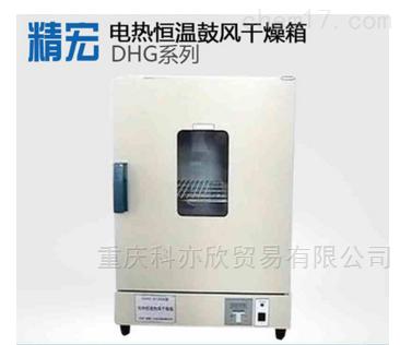 中型烤箱/电热恒温鼓风干燥箱
