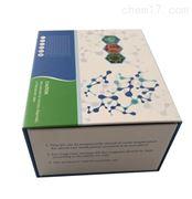 大鼠apelin 12(AP12)ELISA试剂盒
