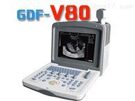 gdf-s8背膘眼肌面积测定仪新报价价格