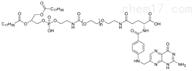DSPE-PEG-FA MW:2000磷脂PEG叶酸