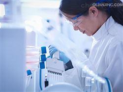 MIC-iCell-s006小鼠骨骼肌成纤维细胞/免疫荧光鉴定