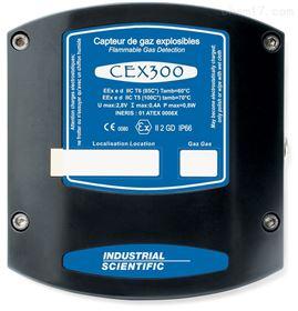 CEX 300奥德姆OLDHAM 可燃气体检测仪