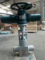J961YJ961Y全锻造高压电站阀