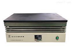 DB-6A恒温数显防腐石墨电热板