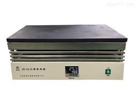 DB-6ADB-6A恒温数显防腐石墨电热板