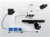 MX12R半导体\FPD检查显微镜