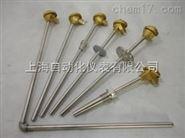 WZPN-131耐磨热电阻
