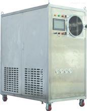 Pilot8-12T+全功能-110℃中试冻干机