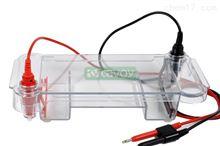 SC12型 浸没式水平电泳槽电泳设备