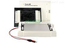 Trans-SD 通用型半干转印电泳系统 电泳设备