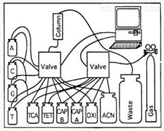 Macosko-2011-10(V+)进口采购Chemgenes核酸