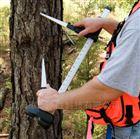 黑色树木测径仪