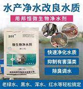 解决鱼塘黑水绿水红水微生物净水剂