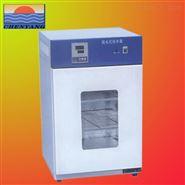 金坛晨阳专业生产DHP系列产品电热恒温干燥箱