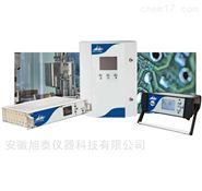 GC-PID便携式气体分析仪