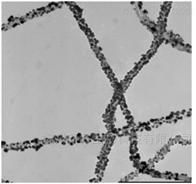 CNT-Palladium碳纳米管-钯纳米粒子复合结构