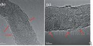 CNT-g-PDMAEMA/CNT-g-PNIPAM碳纳米管
