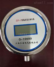 ZGF-II型高压直流微安表