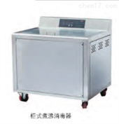 柜式煮沸消毒器