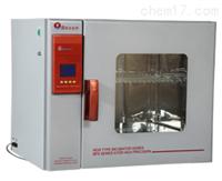 实验室用电热恒温培养箱