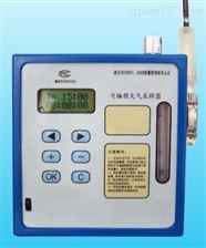 型号:ZRX-27822可编程大气采样器