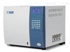 GC6891N变压器油色谱分析仪