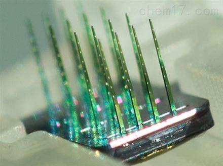 NeuroNexus 3D电极