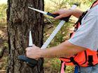 黑色樹木測徑儀