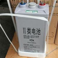 双登蓄电池系列