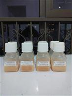 EXO-FBS-50A-1去外泌体胎牛血清SBI EXO-FBS-50A-1