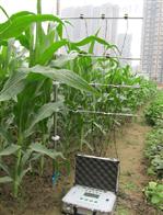 光合有效辐射测定仪SYS-PAR-Ⅱ