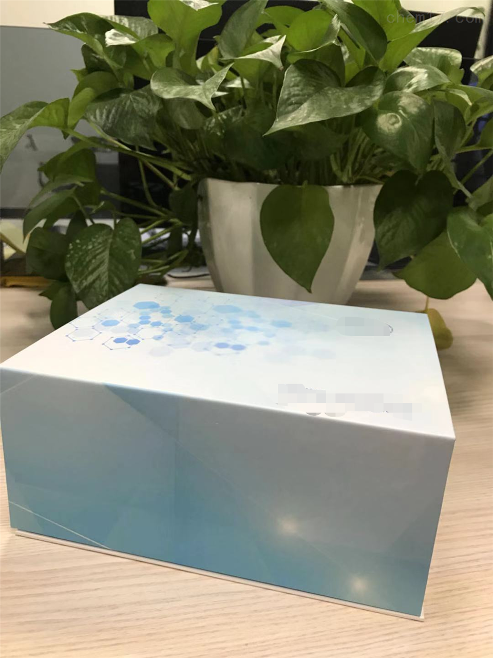 人乙酰胆碱酯酶(AChE)ELISA试剂盒