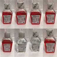 SH30022.01hycloneDMEM高糖培养基(SH30022.01)