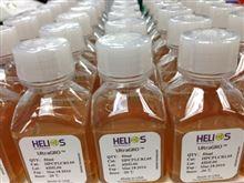Helios UltraGRO血清替代物MSC培养基添加物