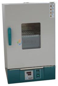 甘肅立式電熱恒溫培養箱DH2500A數顯控溫