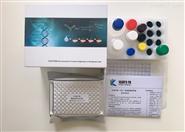 人杀菌肽B(CecB)ELISA试剂盒