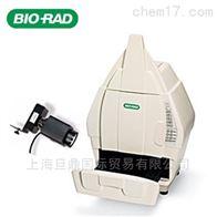 Gel Doc™XR+伯乐Gel Doc™XR+凝胶成像分析系统